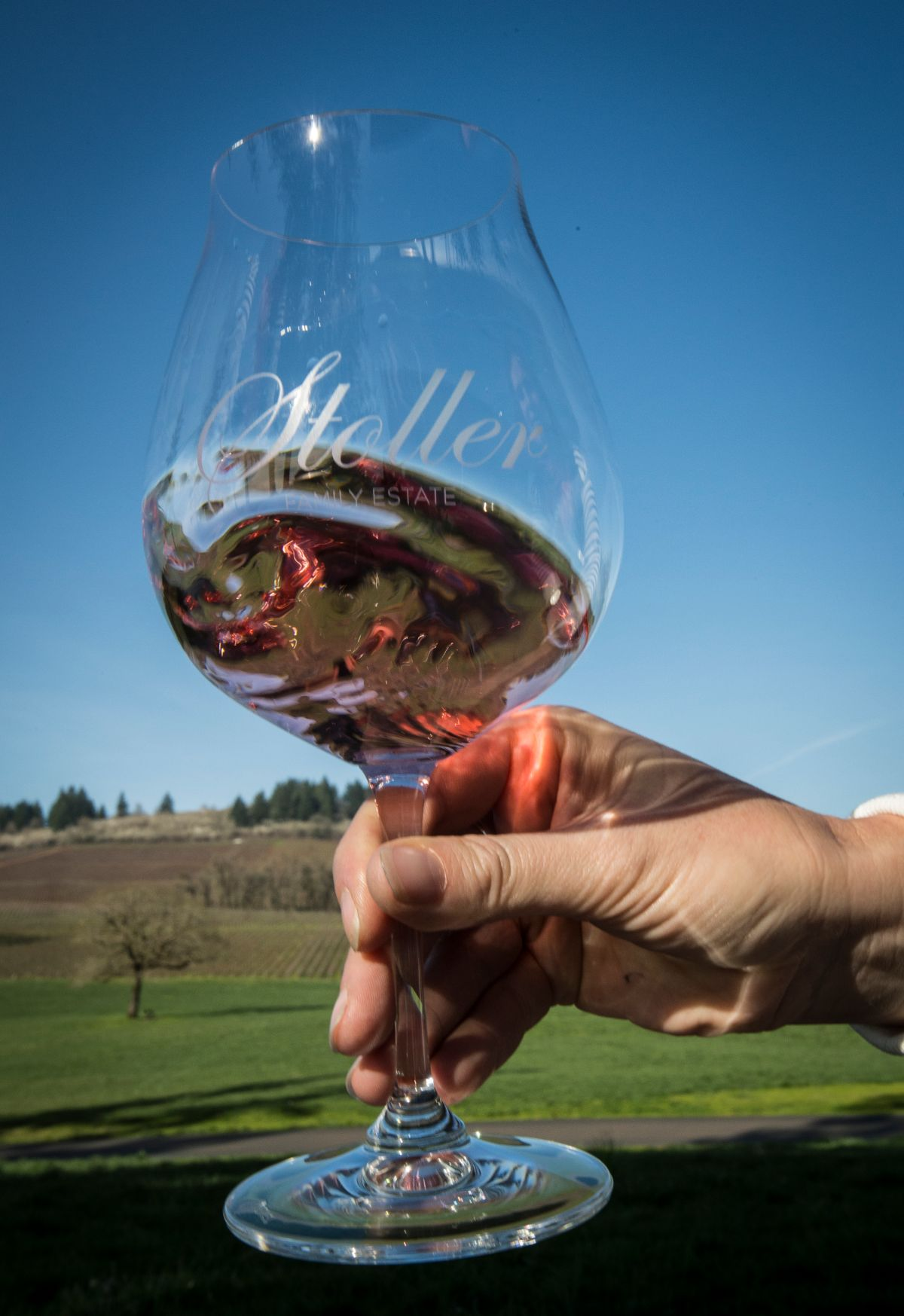 Swirling wine glass at Stoller in Oregon