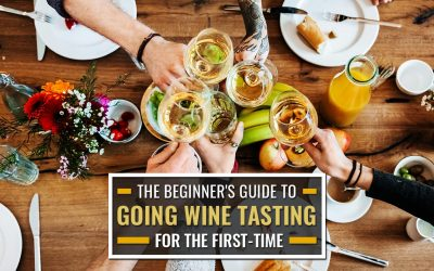 The Beginner's Guide to Going Wine Tasting for the First-Time