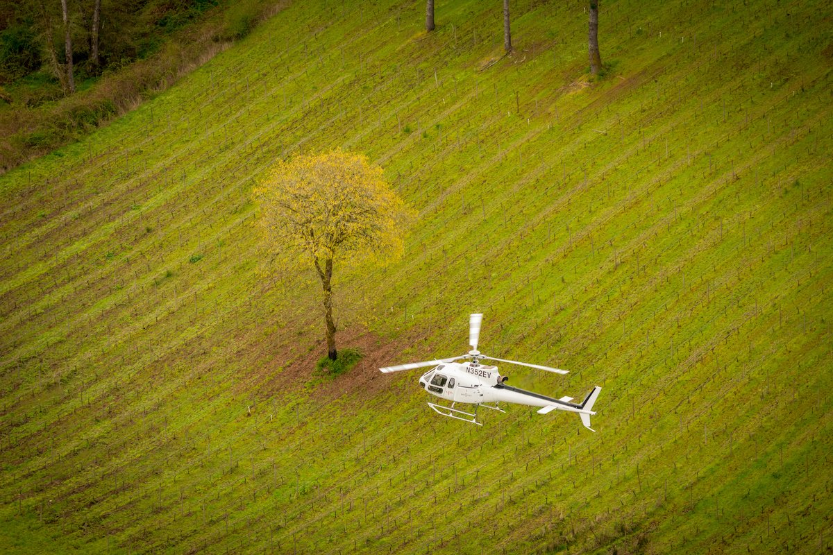 Tour DeVine helicopter flying over Newberg Oregon vineyard