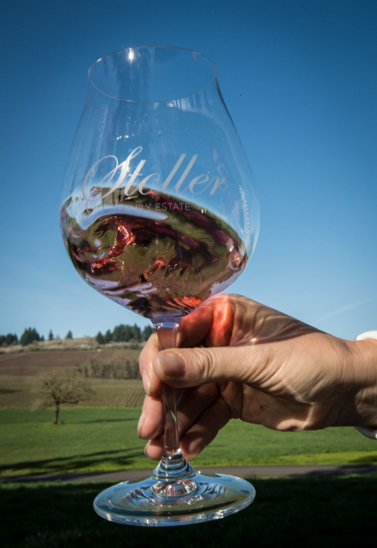 Rose swirling in a Stoller Family Estates glass at a vineyard